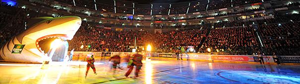 605x170_blog_ice_hockey_003