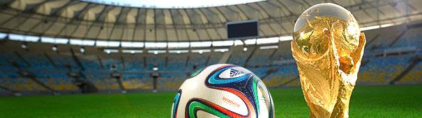 Fußball-WM 2014 - Pokal und Ball