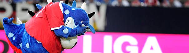 HSV Dino schämt sich