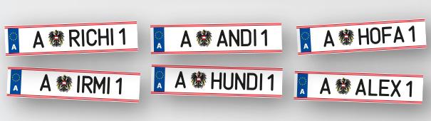 Bundespräsidentenwahl Österreich 2016