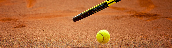 ATP Tennis French Open